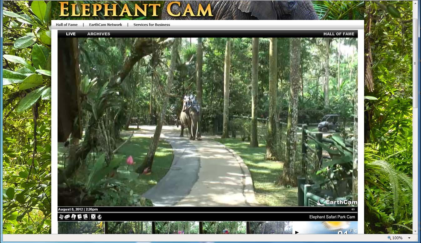 Bali Adventure Tours and the Elephant Safari Park and Lodge